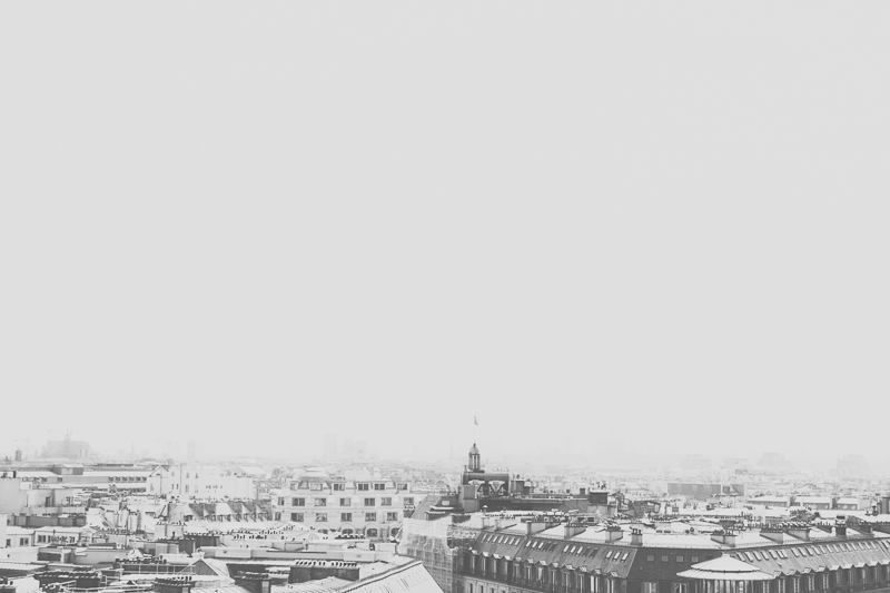 View from rooftop Galleries La Fayette Paris