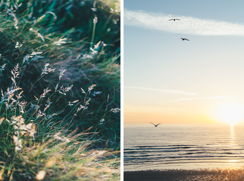 MissGenPhotography_Cornwall-002x2