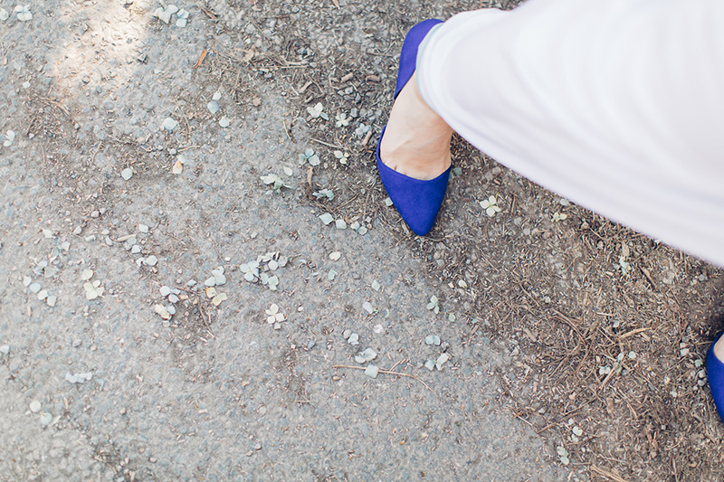electric blue wedding shoes with dried hydrangea confetti