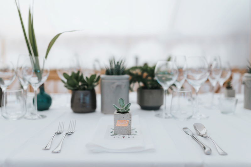 succulent wedding favours in concrete pots